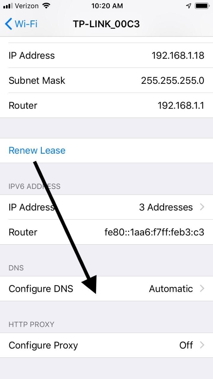 iPhone Configure DNS