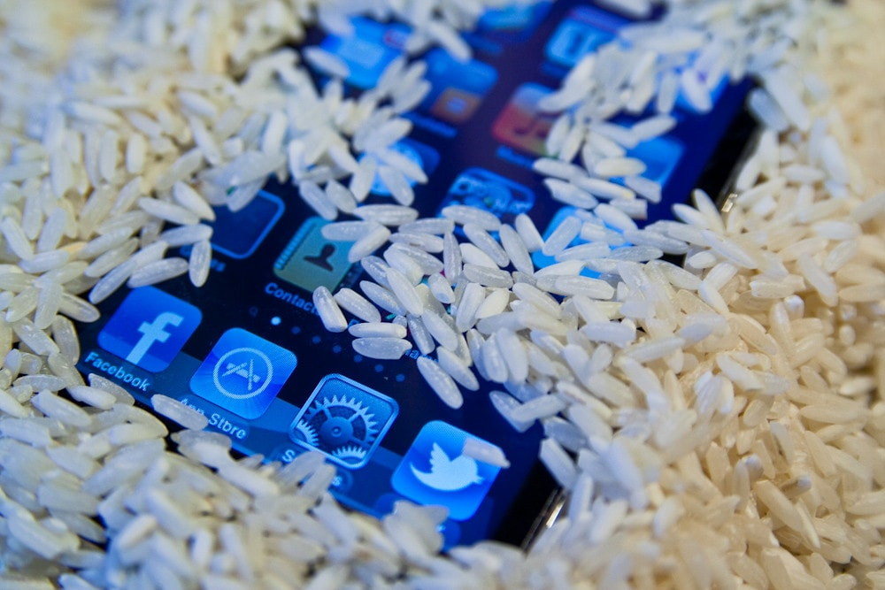 iPhone in Rice