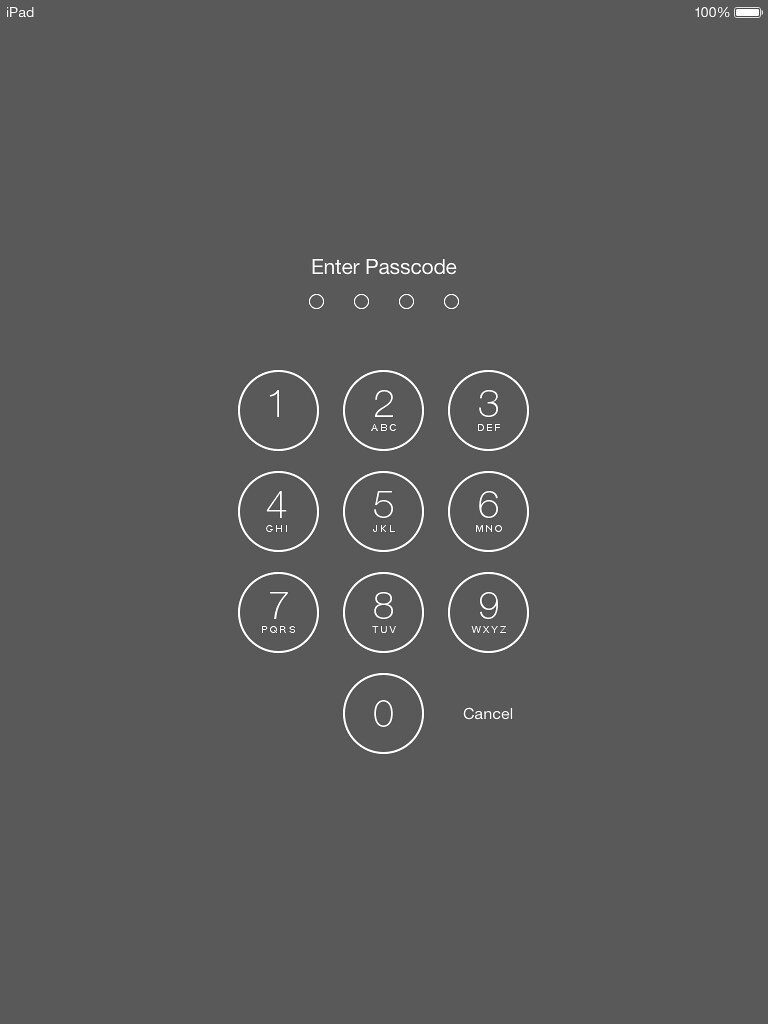 Passcode Screen for Locked Out of iPad